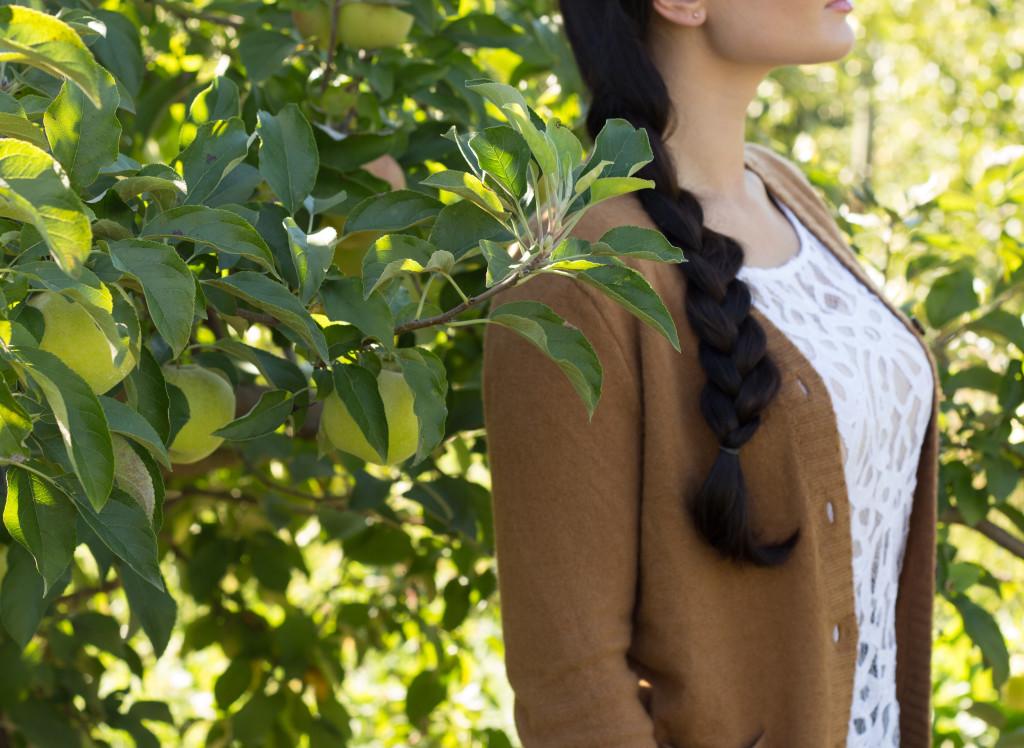 orchard season