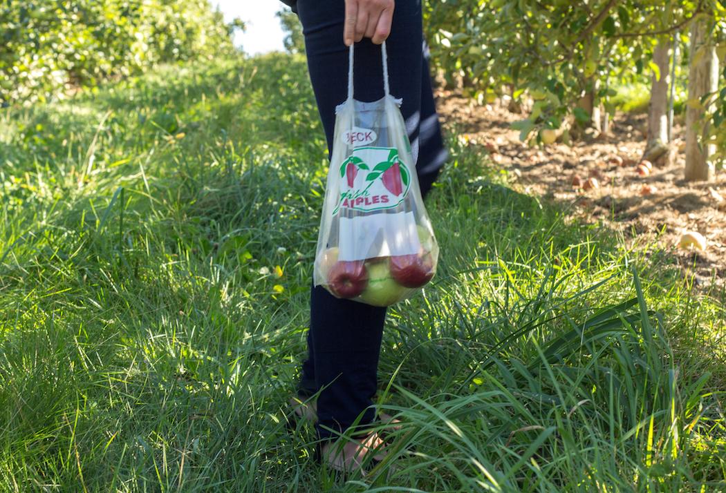 Monde et Mode | Orchard Season