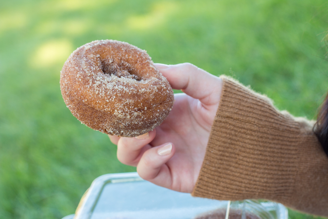 Tanners Orchard Apple Cider Donut