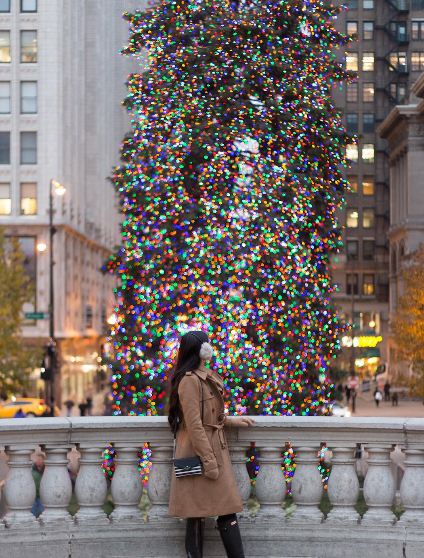 Christmas Tree Chicago