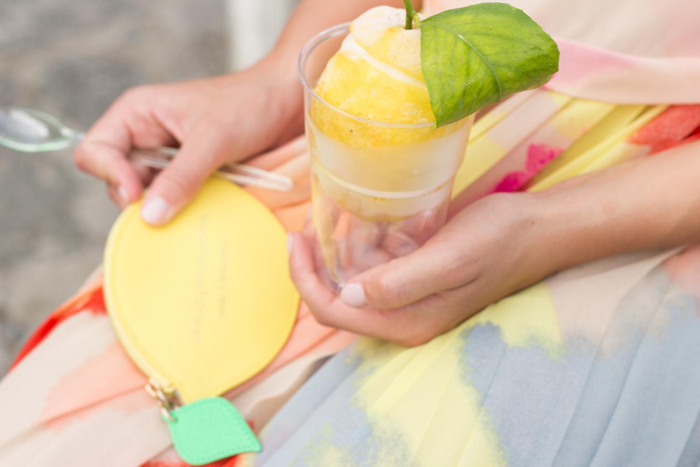 frozen lemon dessert + kate spade lemon coin purse